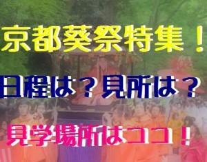 葵祭 遠方から来られる方や、葵祭が初めて! って方でも、120%楽しめます(´∀`) 地元民おす